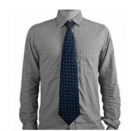 Necktie Hidden Camera for Spies