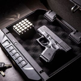 VAULTEK VT20i: App Smart Biometric Handgun with Bluetooth