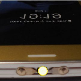 Cheetah Max Power Smartphone Stun Gun