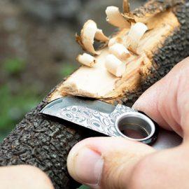 OMNI Damascus Pocket Knife