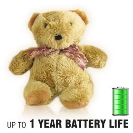 Teddy Bear Hidden Camera Nanny Cam