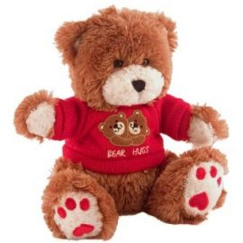 Hardwired Teddy Bear with Surveillance Camera