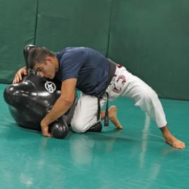 Combat X Grappling Trainer