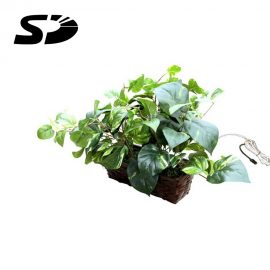 Fake Plant Hidden Camera