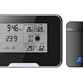 Zetronix Weather Station with Hidden Camera