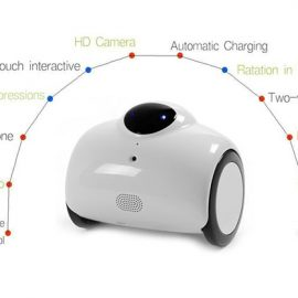 Ranababy Automatic Home Robot