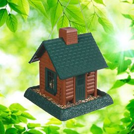 Xtreme Life 720P Bird Feeder DVR