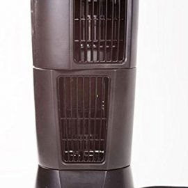Zone Shield WiFi Night Vision Oscillating Fan