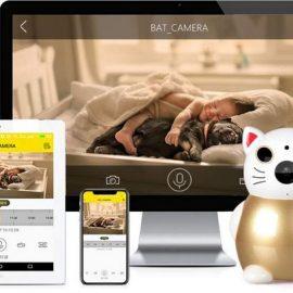 Qinniao WiFi Bat Camera